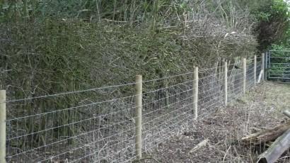 Stock netting